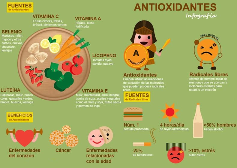 infografía sobre los antioxidantes
