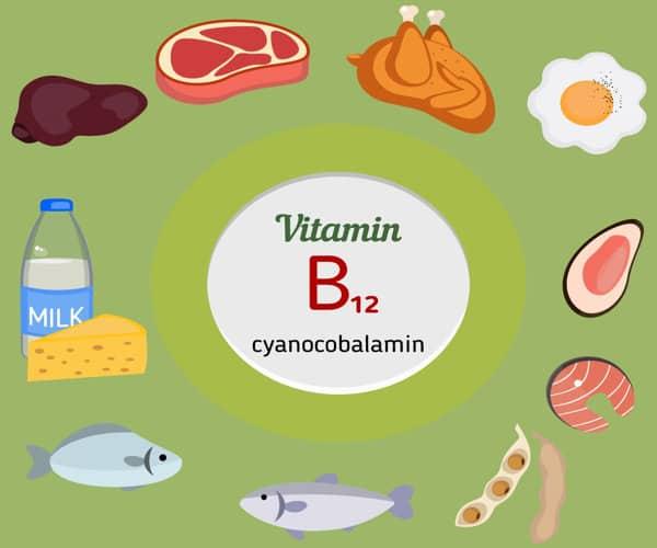 alimentos ricos en contenido de vitamina B12